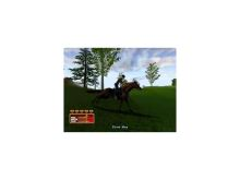 PS2 Let's Ride Silver Buckle Stable