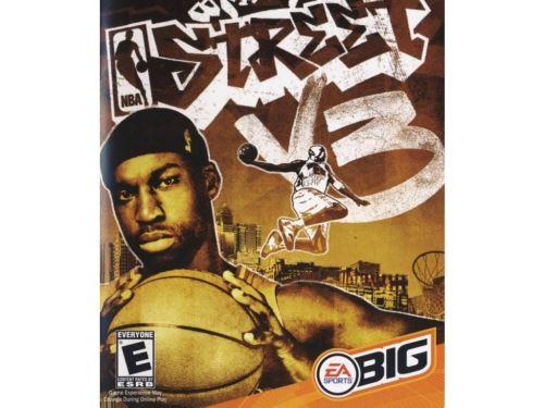 PC NBA Street V3